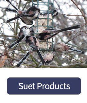 Suet Products