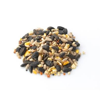 Brinvale All Seasons - Premium Wild Bird Food