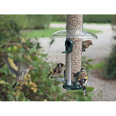 Jacobi Jayne Rain Proof Bird Feeder Guard