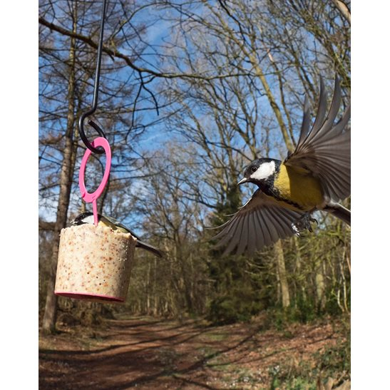 additional image for Easy Peasy - Hanging Suet Cake