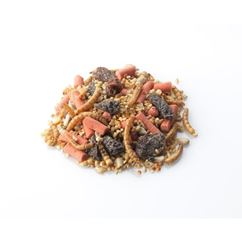 Brinvale Robin Insect Wild Bird Food