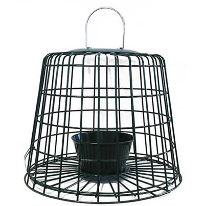 Brinvale Suet Pellet and Mealworm Feeder Guardian