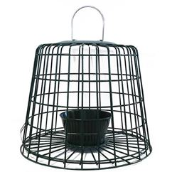 Suet Pellet and Mealworm Feeder Guardian