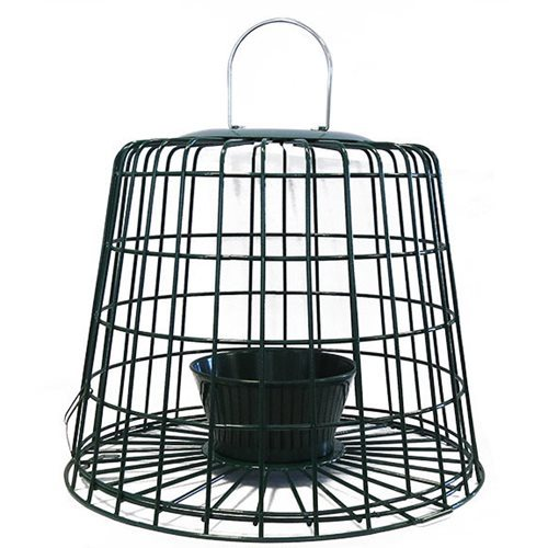 CJ Wildlife Suet Pellet and Mealworm Feeder Guardian