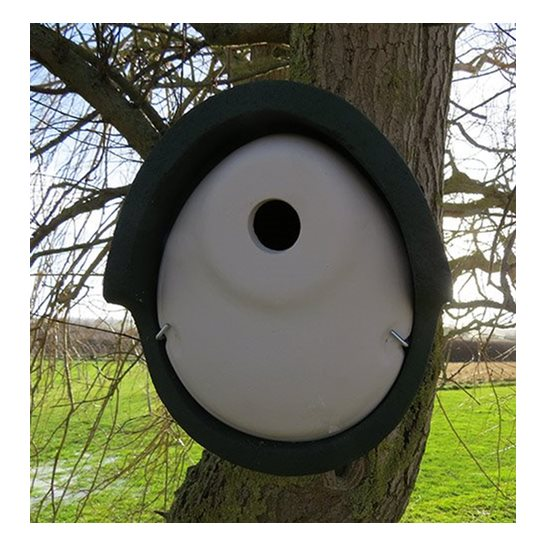additional image for Woodstone Oval Bird Box 32mm