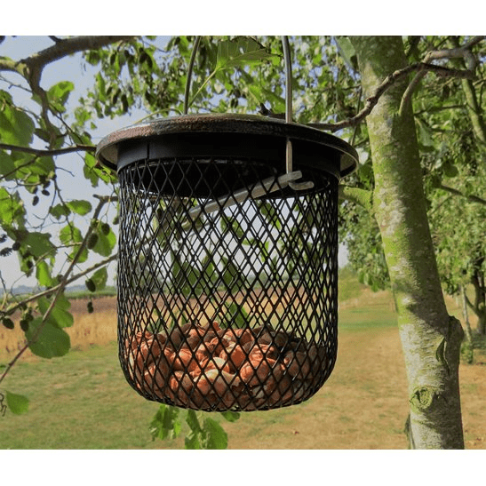 additional image for Peanut Bird Feeder