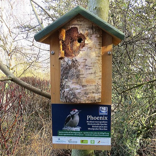 additional image for Woodpecker Nest Box